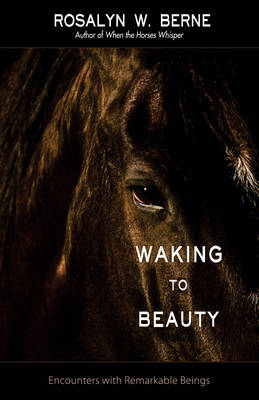 Waking to Beauty: Encounters with Remarkable Beings (Paperback)