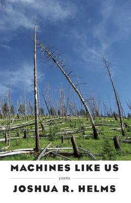 Machines Like Us (Paperback)