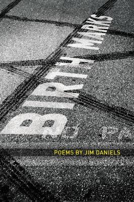 Birth Marks - American Poets Continuum (Paperback)