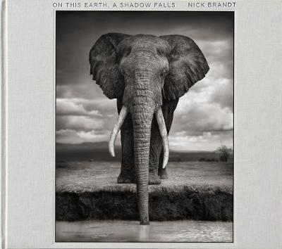 Nick Brandt: On This Earth, A Shadow Falls (Hardback)