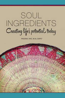 Soul Ingredients: Creating Life's Potential Today (Paperback)