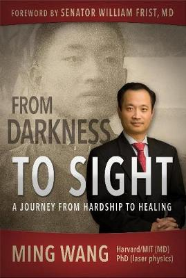From Darkness to Sight: A Journey from Hardship to Healing (Paperback)