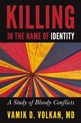 Killing in the Name of Identity: A Study of Bloody Conflicts (Paperback)