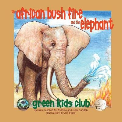 The African Bush Fire and the Elephant: Green Kids Club (Paperback)