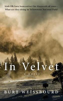 In Velvet: A Novel (Hardback)