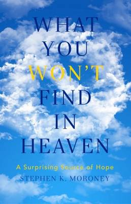 What You Won't Find in Heaven: A Surprising Source of Hope (Paperback)