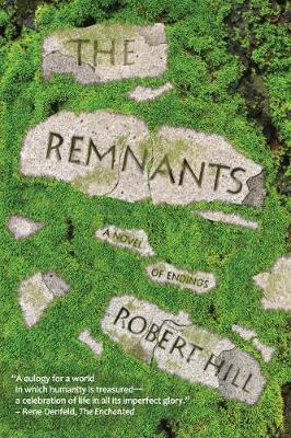The Remnants: Ingenious Improvisations on Money, Food, Waste, Water & Home (Paperback)