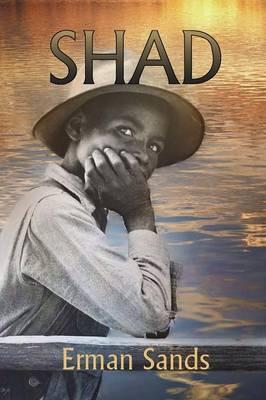 Shad (Paperback)