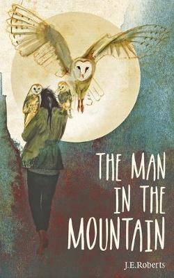 The Man in the Mountain (Paperback)