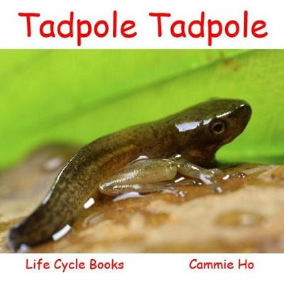 Tadpole Tadpole (Paperback)