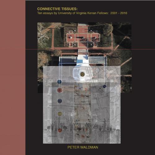 Connective Tissues: Ten Essays by University of Virginia Kenan Fellows 2001-2016 (Hardback)