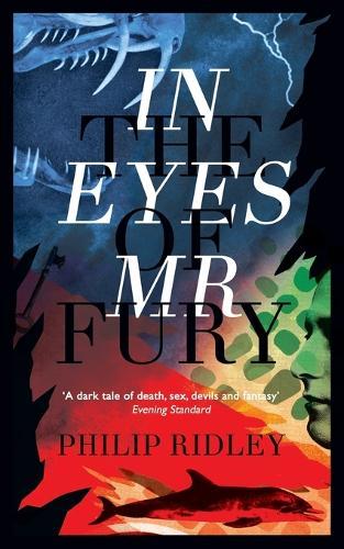 In the Eyes of Mr Fury (Paperback)