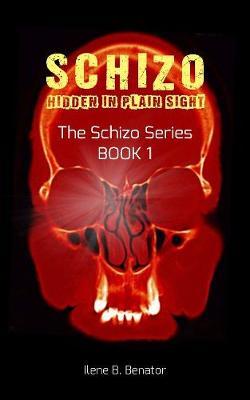 Schizo: Hidden in Plain Sight (Paperback)