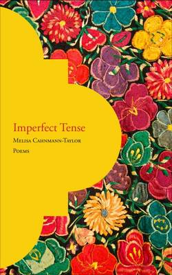Imperfect Tense (Paperback)