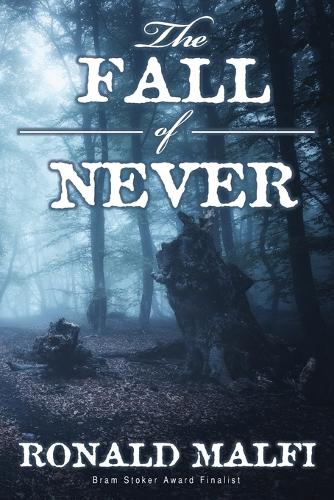 The Fall of Never (Paperback)