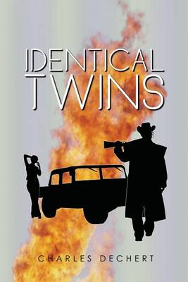 In Pursuit of Identical Twins (Paperback)