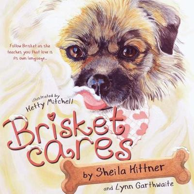 Brisket Cares: Love Is Its Own Language (Paperback)