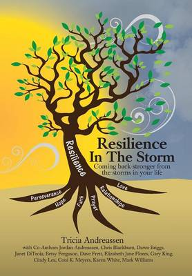 Resilience in the Storm: Coming Back Stronger from the Storms in Your Life - Warrior 1 (Hardback)