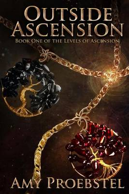Outside Ascension: The Levels of Ascension (Paperback)