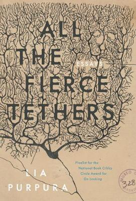 All the Fierce Tethers (Paperback)