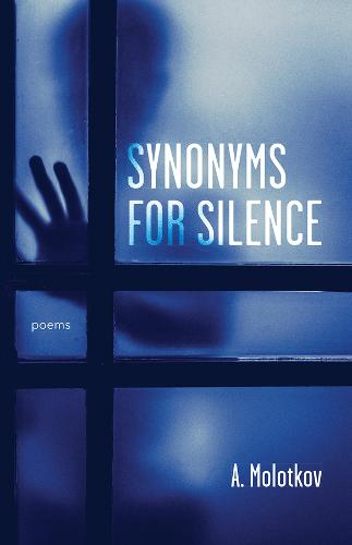 Synonyms for Silence (Paperback)