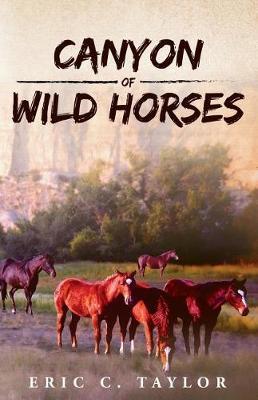 Canyon of Wild Horses (Paperback)