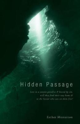 Hidden Passage (Paperback)