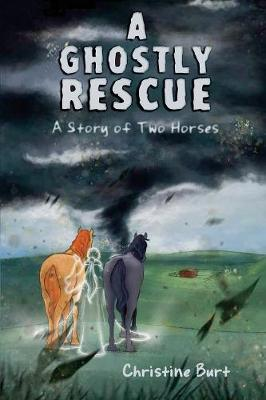 A Ghostly Rescue: A Story of Two Horses (Paperback)