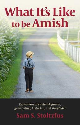 What It's Like to Be Amish (Paperback)
