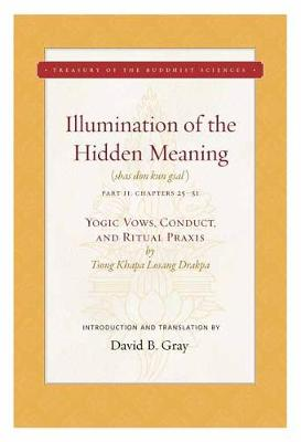 Illumination of the Hidden Meaning Volume 2: Yogic Vows, Conduct, and Ritual Praxis (Hardback)