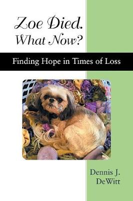 Zoe Died. What Now?: Finding Hope in Times of Loss (Paperback)