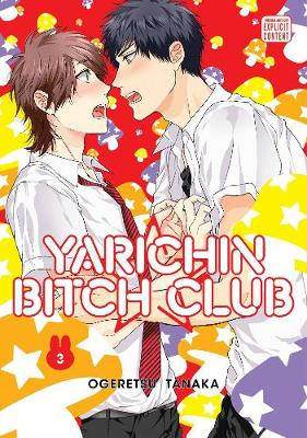 Yarichin Bitch Club, Vol. 3 - Yarichin Bitch Club 3 (Paperback)