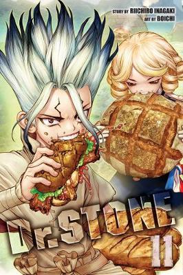 Dr. STONE, Vol. 11 - Dr. STONE 11 (Paperback)
