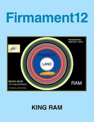 Firmament12 (Paperback)