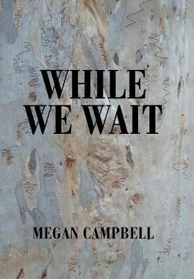 While We Wait (Hardback)