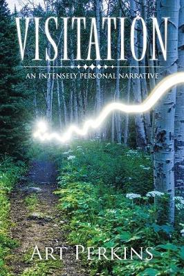 Visitation: An Intensely Personal Narrative (Paperback)