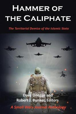 Hammer of the Caliphate: The Territorial Demise of the Islamic State-A Small Wars Journal Anthology (Paperback)