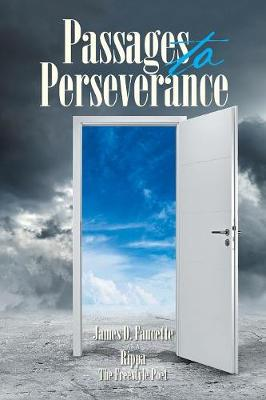 Passages to Perseverance (Paperback)