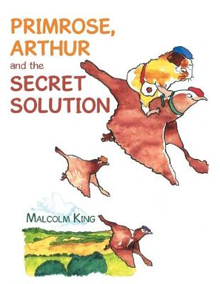 Primrose, Arthur and the Secret Solution (Paperback)