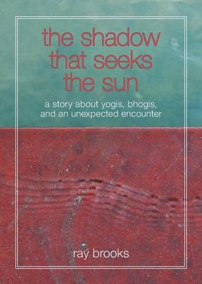 The Shadow That Seeks the Sun: A Story about Yogis, Bhogis, and an Unexpected Encounter (Paperback)