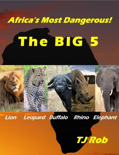 Africa's Most Dangerous - The Big 5: (Age 6 and Above) (Paperback)