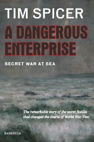 A Dangerous Enterprise: Secret War at Sea (Hardback)