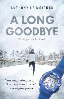 A Long Goodbye (Paperback)