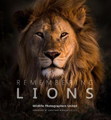 Remembering Lions - Remembering Wildlife 4 (Hardback)
