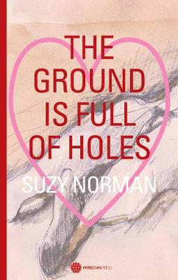 The Ground is full of holes (Paperback)