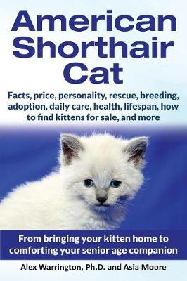 American Shorthair Cat: From Bringing Your Kitten Home to Comforting Your Senior Age Companion (Paperback)