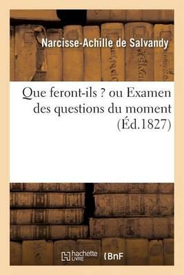 Que Feront-Ils ? Ou Examen Des Questions Du Moment - Histoire (Paperback)