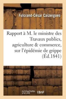 Rapport A M. Le Ministre Des Travaux Publics, Agriculture Commerce, Sur L'Epidemie de Grippe - Sciences (Paperback)
