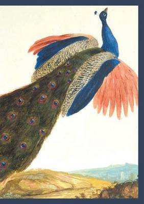 Carnet Lign�, Paon - Bnf Animaux (Paperback)