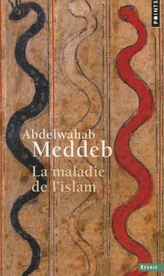 La Maladie De L'Islam (Paperback)